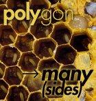 Poly-many