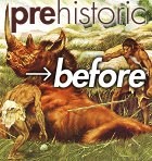 Pre-before